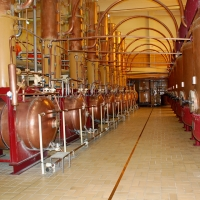 All the world's Cointreau is distilled here | Culinary Holidays France