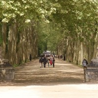 Walking to the Château de Chenonceau | Culinary Holidays