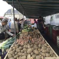 The open market | Veggies | Culinary Holidays