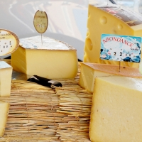 Cheese selections | Culinary Holidays