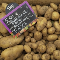 Potatoes | Culinary Holidays